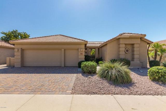 493 W Champagne Drive, Chandler, AZ 85248 (MLS #5821499) :: Arizona 1 Real Estate Team