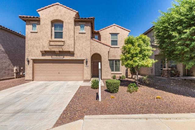 11112 E Sentiero Avenue, Mesa, AZ 85212 (MLS #5821517) :: Arizona 1 Real Estate Team