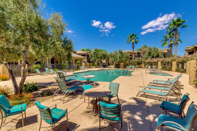 295 N Rural Road #110, Chandler, AZ 85226 (MLS #5821538) :: Arizona 1 Real Estate Team