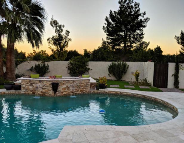 11810 N Blackheath Road, Scottsdale, AZ 85254 (MLS #5821544) :: Arizona 1 Real Estate Team