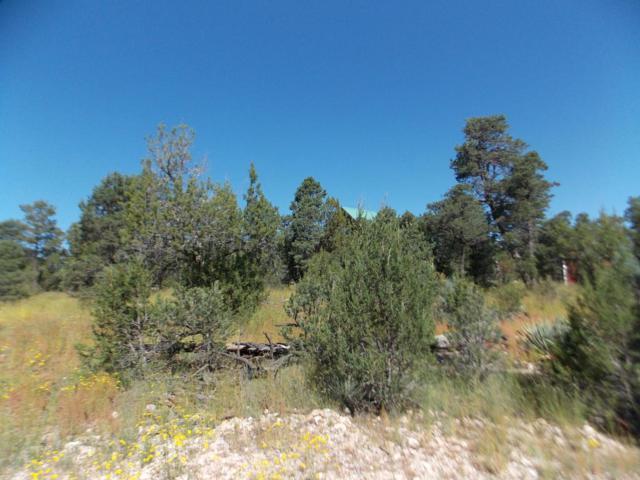 2937 Antelope Trail, Overgaard, AZ 85933 (MLS #5821548) :: Phoenix Property Group