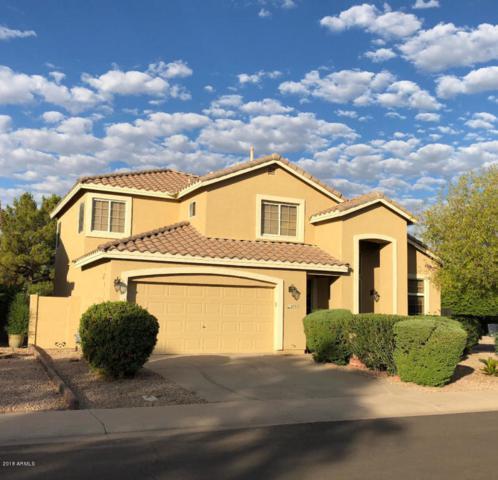 2751 W Shannon Court, Chandler, AZ 85224 (MLS #5821553) :: Arizona 1 Real Estate Team