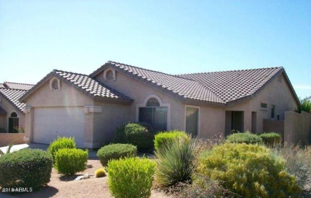 10312 E Penstamin Drive, Scottsdale, AZ 85255 (MLS #5821555) :: Arizona 1 Real Estate Team