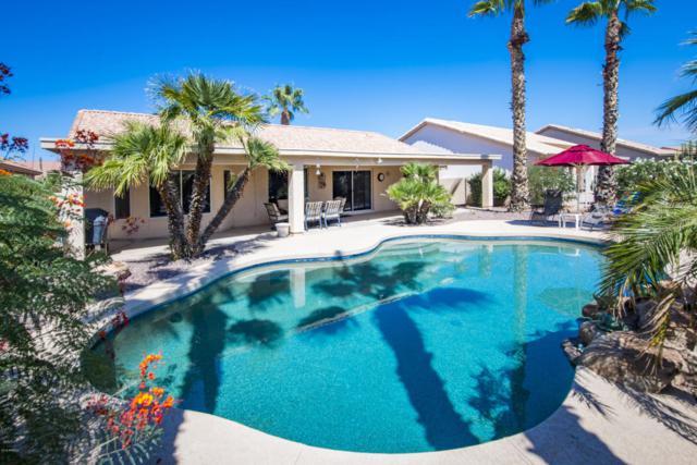 8949 E Coopers Hawk Drive, Sun Lakes, AZ 85248 (MLS #5821557) :: Phoenix Property Group
