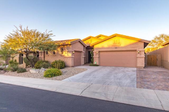 29079 N 70TH Avenue, Peoria, AZ 85383 (MLS #5821567) :: The Laughton Team