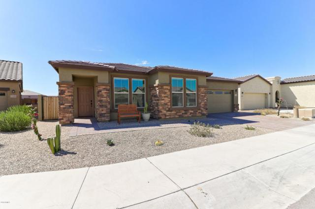 17088 S 182ND Avenue, Goodyear, AZ 85338 (MLS #5821578) :: Occasio Realty