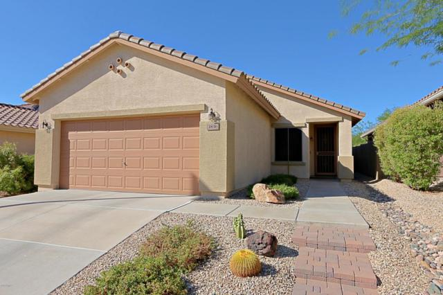 3836 W Ranier Court, Anthem, AZ 85086 (MLS #5821591) :: The Jesse Herfel Real Estate Group