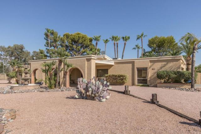 6115 E Mescal Street, Scottsdale, AZ 85254 (MLS #5821597) :: Brett Tanner Home Selling Team