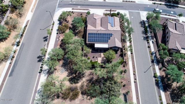 33802 N 23RD Drive, Phoenix, AZ 85085 (MLS #5821603) :: Arizona 1 Real Estate Team