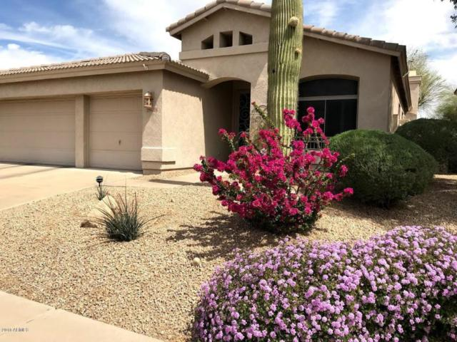 29609 N 48TH Street, Cave Creek, AZ 85331 (MLS #5821619) :: Kelly Cook Real Estate Group