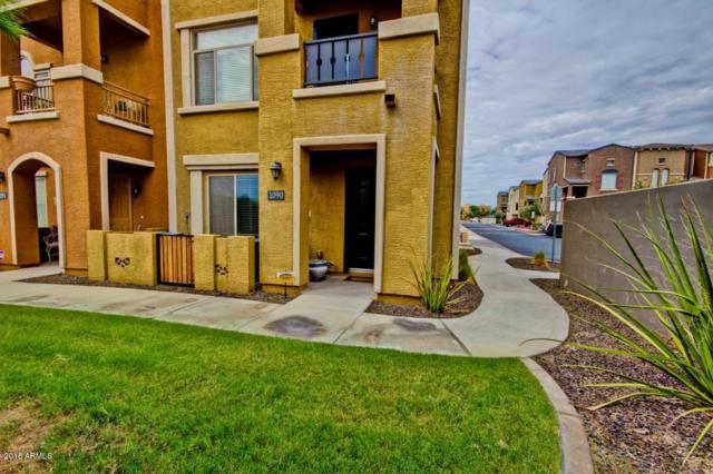 900 S 94TH Street #1090, Chandler, AZ 85224 (MLS #5821624) :: Arizona 1 Real Estate Team