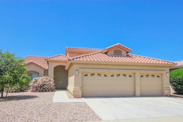 24148 S Lakeway Circle NW, Sun Lakes, AZ 85248 (MLS #5821645) :: Arizona 1 Real Estate Team