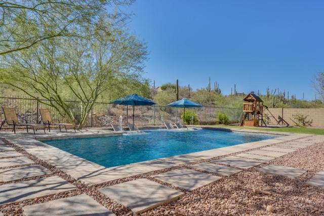 43704 N 48TH Drive, Anthem, AZ 85087 (MLS #5821652) :: Arizona 1 Real Estate Team