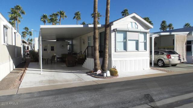 435 S Seneca Drive, Apache Junction, AZ 85119 (MLS #5821663) :: Team Wilson Real Estate