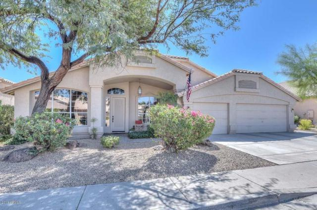 7831 W Topeka Drive, Glendale, AZ 85308 (MLS #5821698) :: The Laughton Team