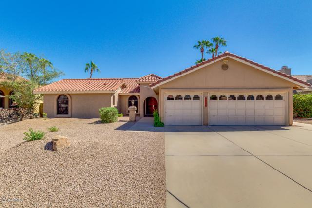 3831 E Coconino Street, Phoenix, AZ 85044 (MLS #5821786) :: Team Wilson Real Estate