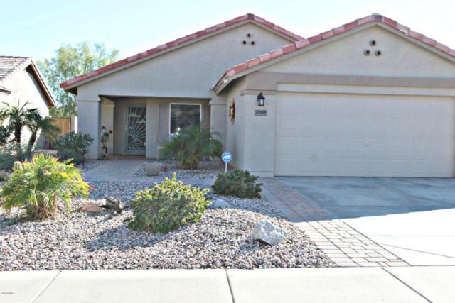 23139 W Antelope Trail, Buckeye, AZ 85326 (MLS #5821810) :: The W Group