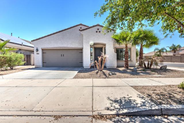 17437 W Papago Street, Goodyear, AZ 85338 (MLS #5821833) :: The Daniel Montez Real Estate Group