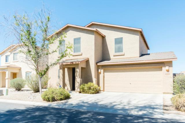 2388 E Meadow Chase Drive, Queen Creek, AZ 85140 (MLS #5821846) :: Revelation Real Estate