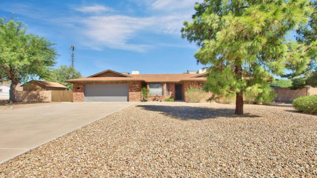 5032 W Saguaro Park Lane, Glendale, AZ 85310 (MLS #5821874) :: Conway Real Estate