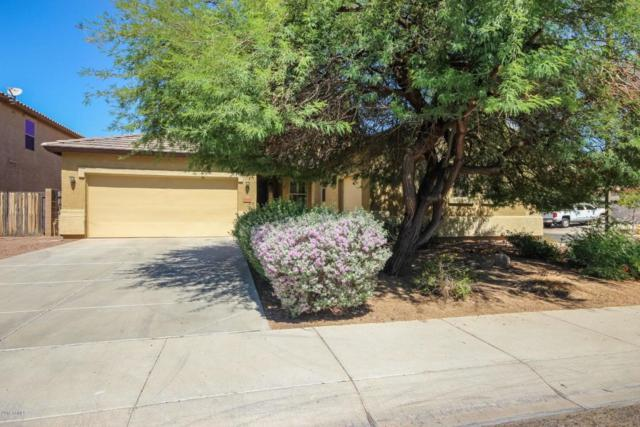 17572 W Marconi Avenue, Surprise, AZ 85388 (MLS #5821906) :: Occasio Realty