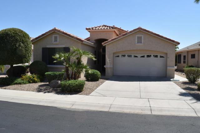 18069 W Skyline Drive, Surprise, AZ 85374 (MLS #5821907) :: Occasio Realty