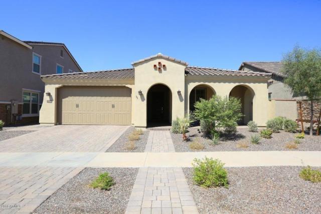 10620 E Sheffield Drive, Mesa, AZ 85212 (MLS #5821917) :: Revelation Real Estate