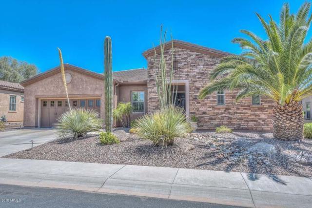 28583 N 123RD Lane, Peoria, AZ 85383 (MLS #5821921) :: The Laughton Team