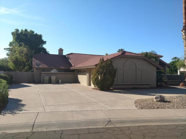 6071 W Lone Cactus Drive, Glendale, AZ 85308 (MLS #5821923) :: The Laughton Team