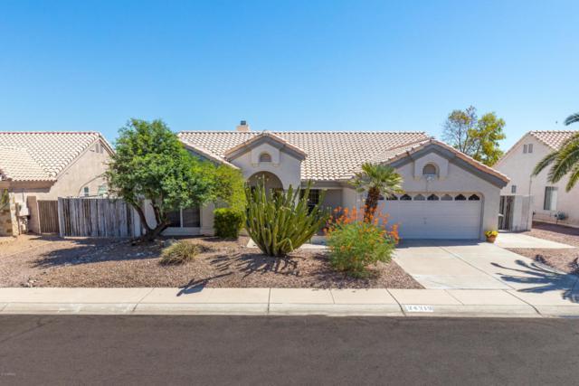 24219 N 41ST Avenue, Glendale, AZ 85310 (MLS #5821930) :: Conway Real Estate