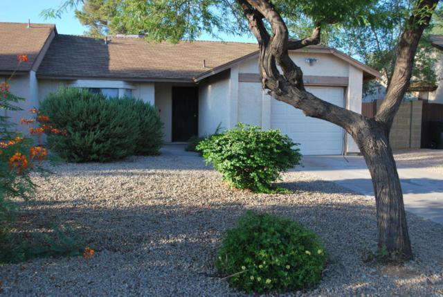 2848 E Impala Avenue, Mesa, AZ 85204 (MLS #5821938) :: Revelation Real Estate