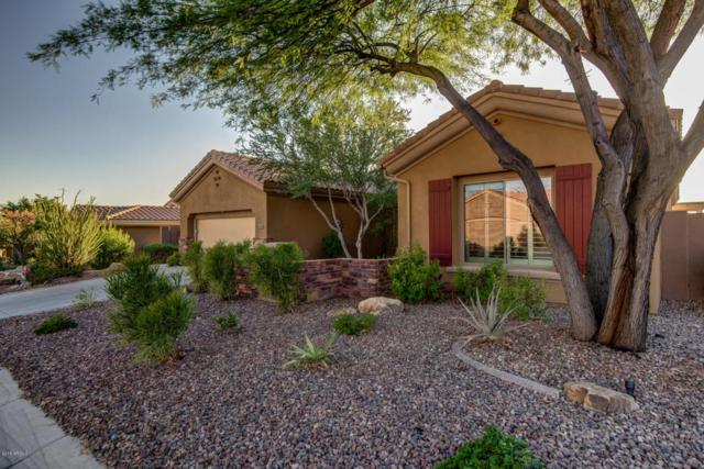 41526 N Laurel Valley Way, Anthem, AZ 85086 (MLS #5821986) :: Occasio Realty