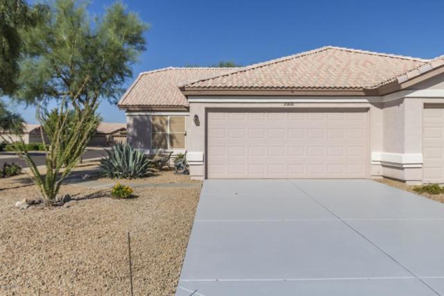 20606 N 103RD Lane, Peoria, AZ 85382 (MLS #5822006) :: The Carin Nguyen Team