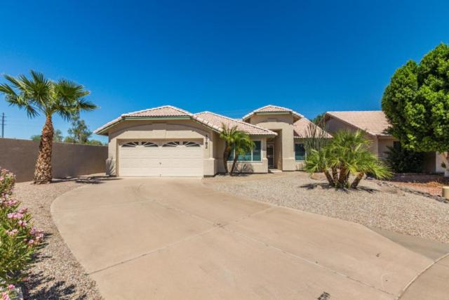 3782 W Megan Street, Chandler, AZ 85226 (MLS #5822015) :: Santizo Realty Group