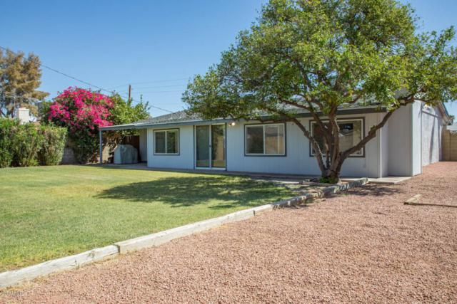 3908 N 86TH Street, Scottsdale, AZ 85251 (MLS #5822025) :: Riddle Realty
