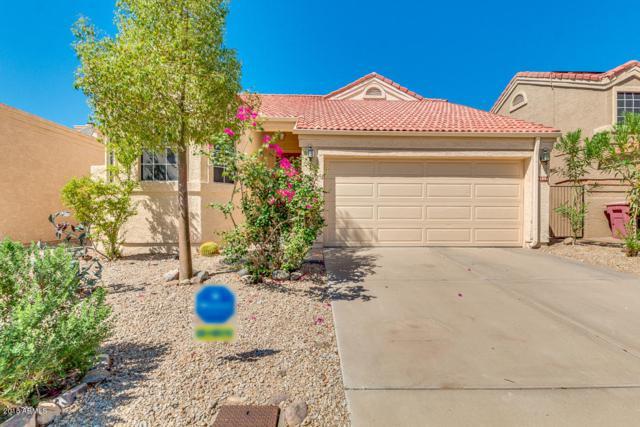 11996 N 112TH Street, Scottsdale, AZ 85259 (MLS #5822061) :: Conway Real Estate