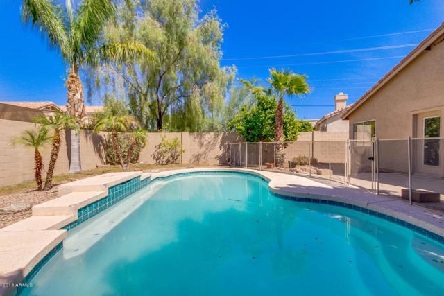 3850 N Lomond Circle, Mesa, AZ 85215 (MLS #5822062) :: Santizo Realty Group