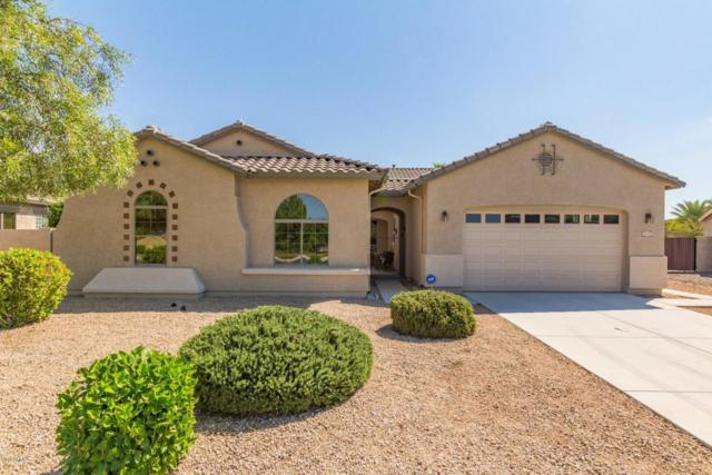 5225 S Opal Place, Chandler, AZ 85249 (MLS #5822066) :: Lux Home Group at  Keller Williams Realty Phoenix