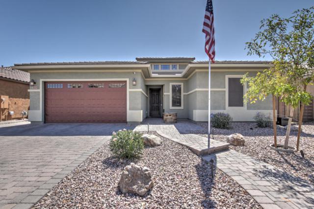 3639 E Carob Drive, Gilbert, AZ 85298 (MLS #5822082) :: Conway Real Estate