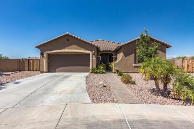 16040 W Desert Flower Drive, Goodyear, AZ 85395 (MLS #5822099) :: The Daniel Montez Real Estate Group