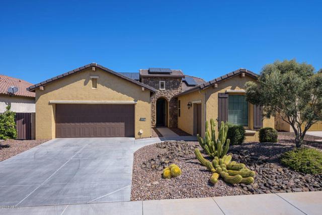 16390 W Sheila Lane, Goodyear, AZ 85395 (MLS #5822104) :: The Daniel Montez Real Estate Group