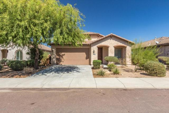 9132 W Plum Road, Peoria, AZ 85383 (MLS #5822116) :: Yost Realty Group at RE/MAX Casa Grande