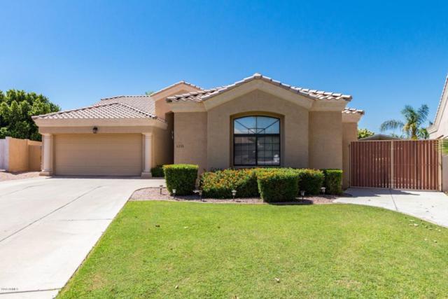 6333 E Player Circle, Mesa, AZ 85215 (MLS #5822118) :: Santizo Realty Group