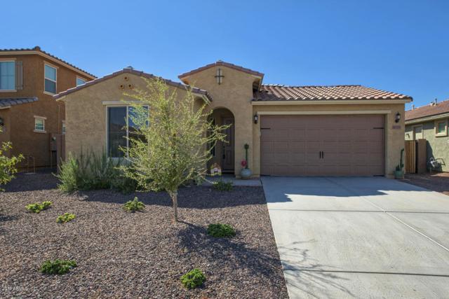 18339 W Getty Drive, Goodyear, AZ 85338 (MLS #5822121) :: The Daniel Montez Real Estate Group