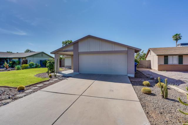 1419 W Colt Road, Chandler, AZ 85224 (MLS #5822130) :: Santizo Realty Group