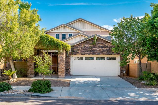 2227 E Bowker Street, Phoenix, AZ 85040 (MLS #5822148) :: The W Group