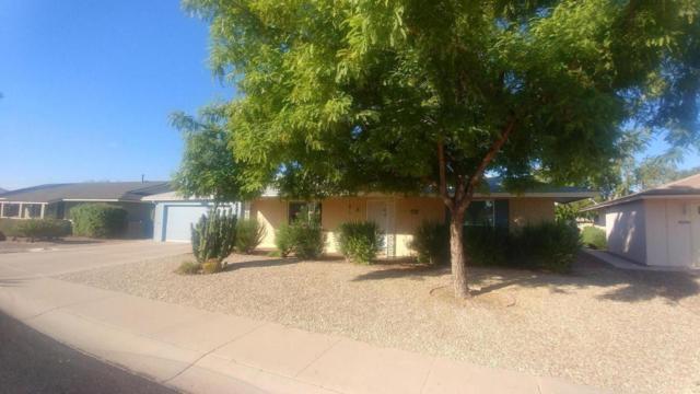 10508 W Bright Angel Circle, Sun City, AZ 85351 (MLS #5822162) :: The Daniel Montez Real Estate Group