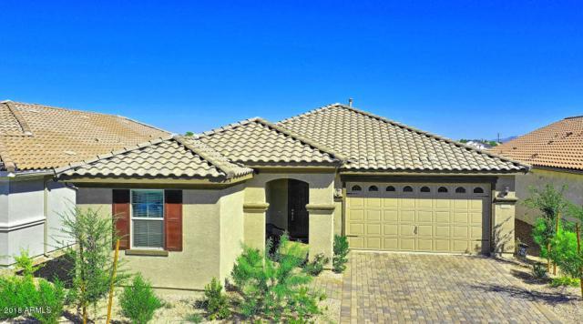 3836 E Liberty Lane, Gilbert, AZ 85296 (MLS #5822168) :: Conway Real Estate