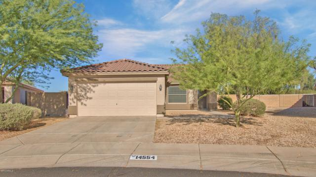 14554 N 158TH Lane, Surprise, AZ 85379 (MLS #5822186) :: Keller Williams Legacy One Realty