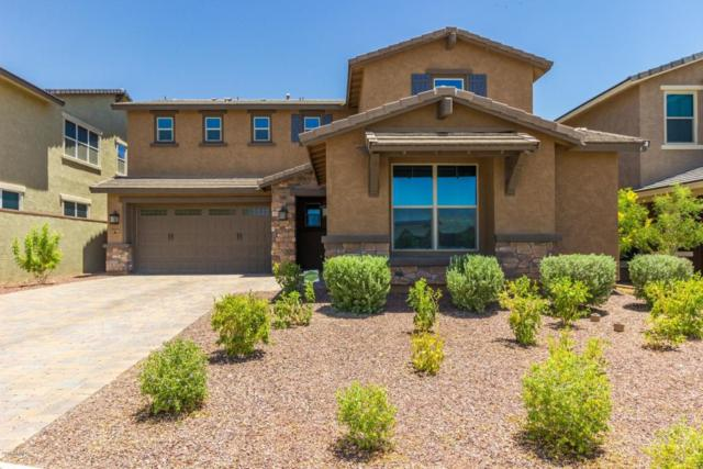 2549 N Springfield Street, Buckeye, AZ 85396 (MLS #5822202) :: Keller Williams Legacy One Realty